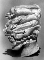 Robert McNally, Small Bust 3