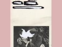 Amie Dicke,  Artwork 10 - Understanding a Photograph